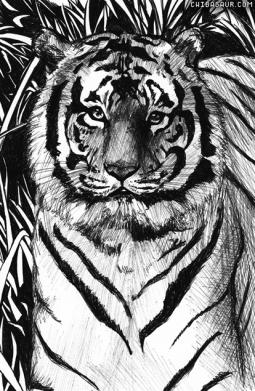 Animals (1)